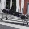 Robot có thể nhảy tung tăng như cún con